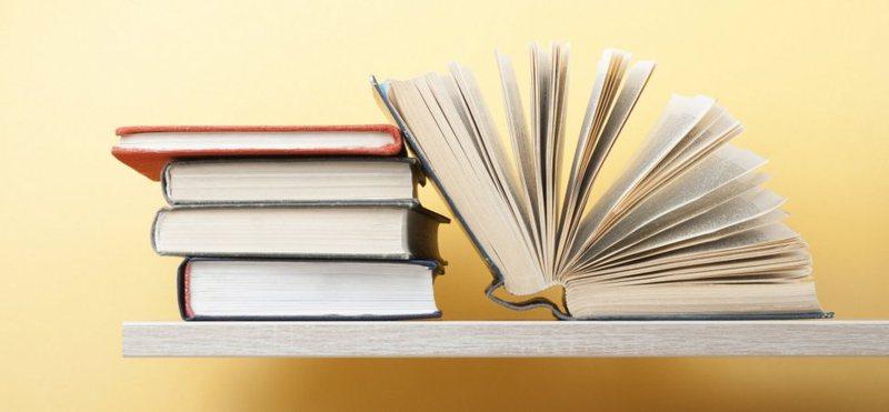 Shkrimtarë dhe studiues: Kritika letrare sporadike, shumë shkrime