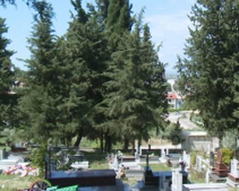 Skandal/ Ngatërrojnë arkivolin në Roskovec, në vend të