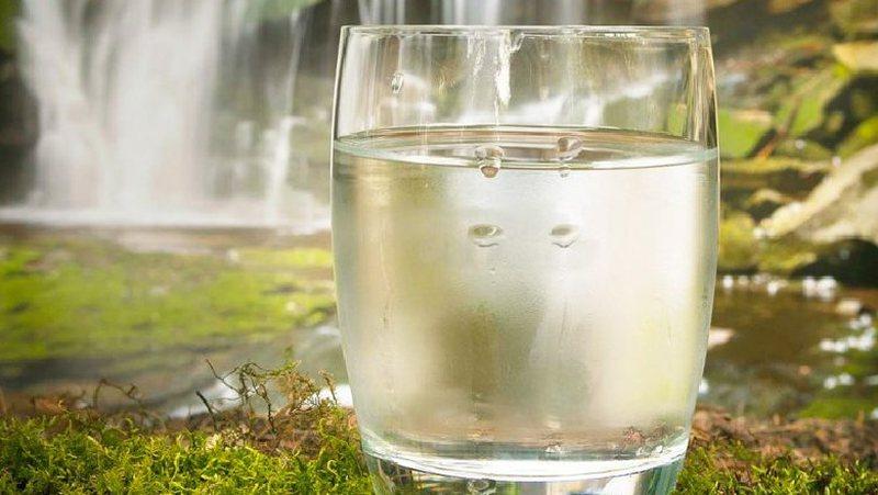 Pini çdo mëngjes një gotë ujë esëll dhe do