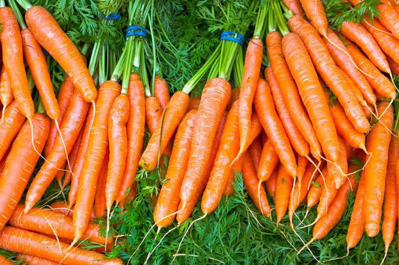 Eat carrots every day and you will be surprised by the health benefits that your