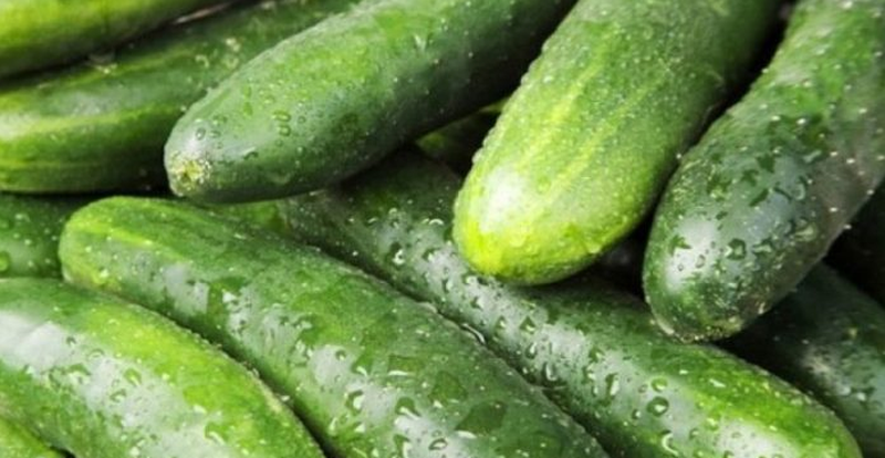 Did you know that? Well-known experts show what cucumber skin heals