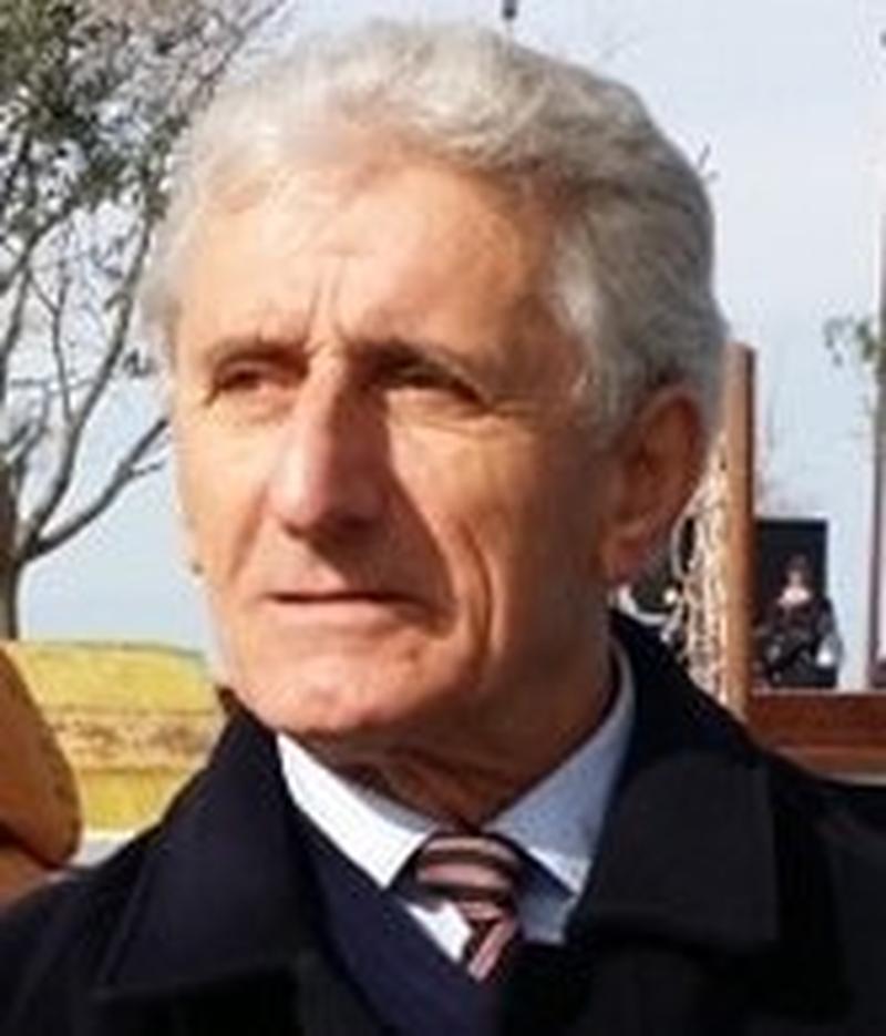"""Berisha, ky Arturo Ui i """"lulelakrës shqiptare""""!"""