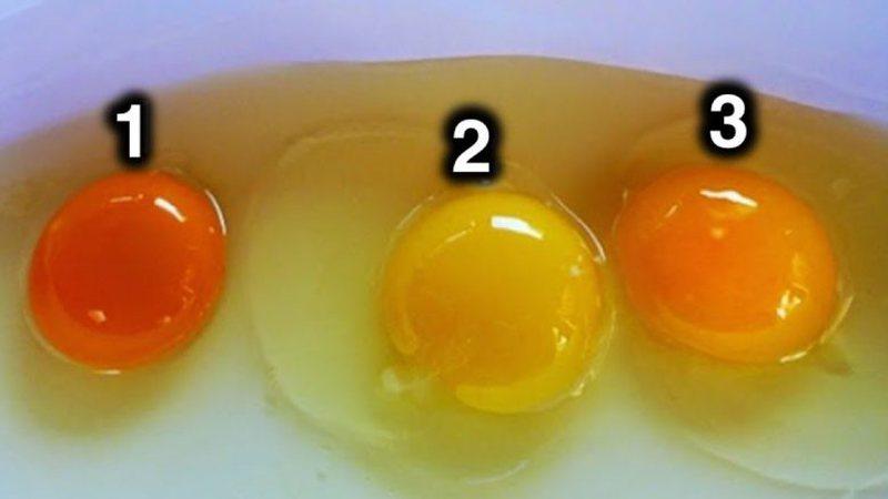 Ja si ta dalloni që një vezë është e shëndetshme,