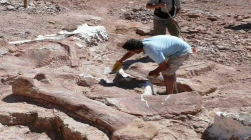 Nuk iu besojnë syve nga ajo çfarë gjejnë! Arkeologët