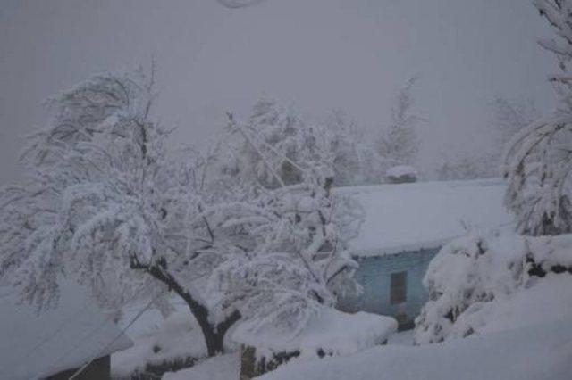 Rikthehen sot reshjet e shiut dhe borës në këto zona