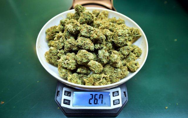 Karantinimi i amerikanëve: Marijuana po shitet po aq shumë sa letrat