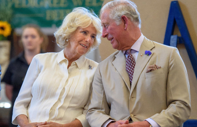 Princi Charles pozitiv ndaj COVID-19