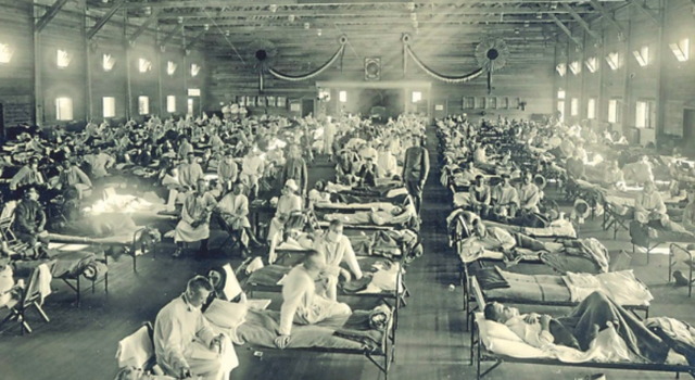 A do kemi trazira sociale pas pandemisë? Ja çfarë na mëson
