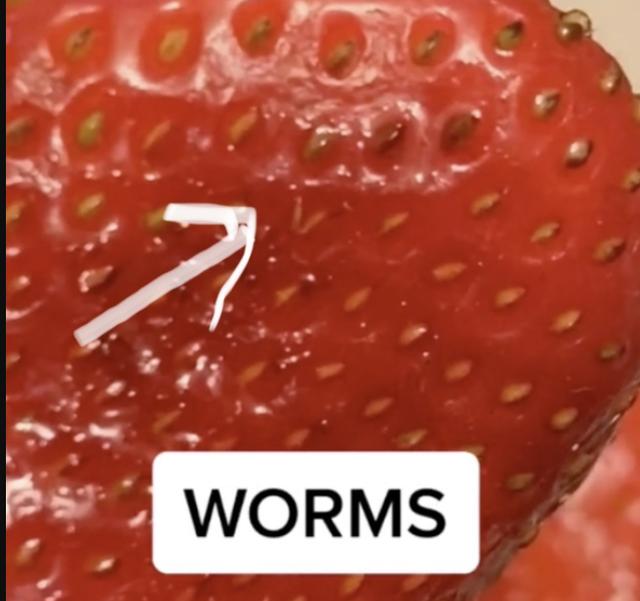 Video/ Nëse do t'i lash luleshtrydhet në ujë me kripë