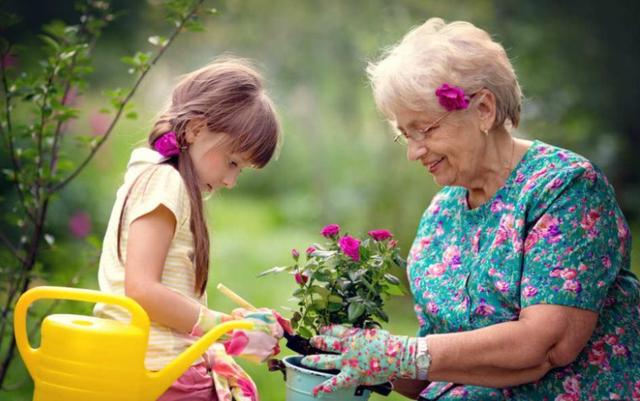 11 këshillat e gjyshes që bën mirë të mos i kesh