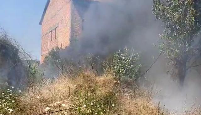 Zjarri në Fushë-Krujë rrezikon disa banesa. Gjithë zona pa