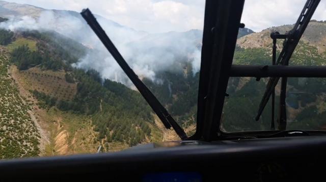 Pas tri orësh, zjarri në pyjet e Rubikut vihet nën kontroll