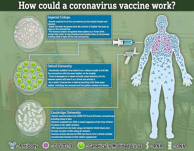 Pse u ndaluan provat me vaksinën AstraZeneca? Historia se çfarë