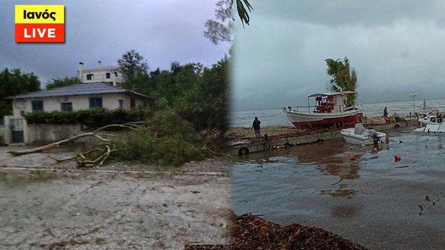 Foto/ Pemë të rrëzuara dhe varka të përmbysura. Më