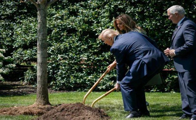 1 trilion pemë deri në 2030-ën! Trump bëhet pjesë e