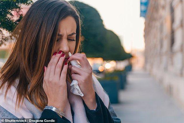 Spray i hundës anti-Covid pritet të fillojë të përdoret
