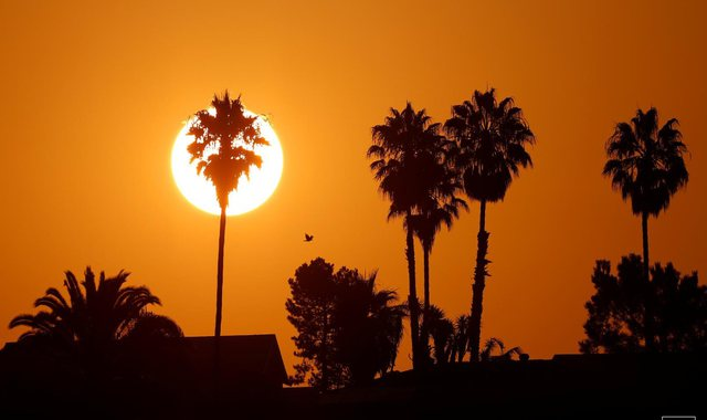 2020-ta mund të jetë viti i dytë më i nxehtë në