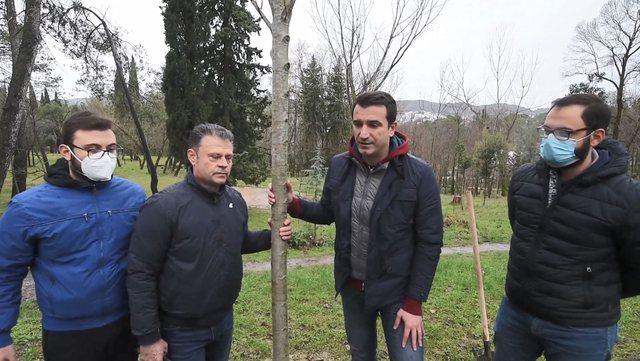 Humbi jetën nga Covid, mbillet një pemë për mjekun Bledi
