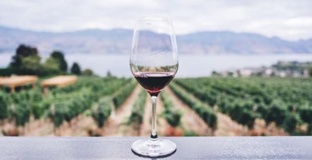 Puna ideale për ty që vdes të pish një gotë verë,