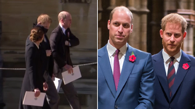 Eksperti i gjuhës së trupit zbërthen sjelljen e Princit Harry me