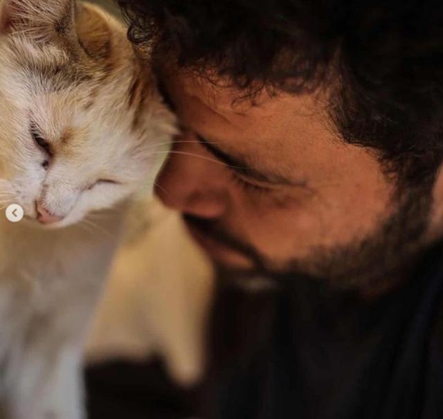 Djali që krijoi një strehë për macet e braktisura mes