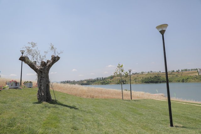 Helen Park inaugurated on Farka Lake, photos seem to be the comment of the mayor