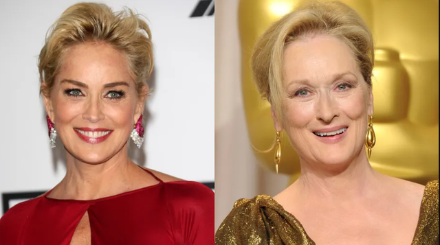 Sharon Stone opposes journalist: Hollywood does not have only Meryl Streep.