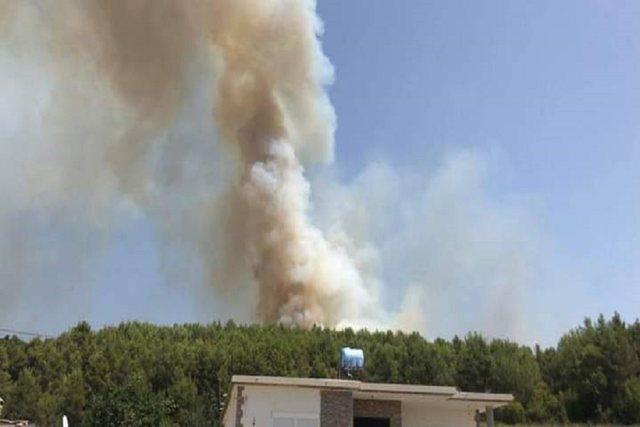 Mamurras/ Vatrat e zjarrit rrezikojnë zonën e banuar, era favorizon
