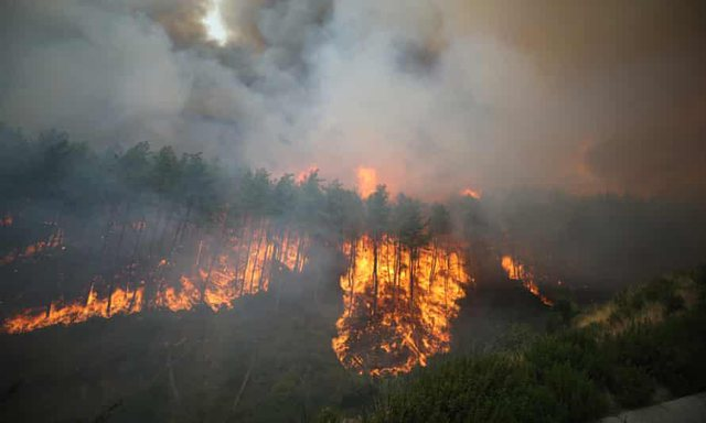 Turkey appeals to the world for help in fighting the biggest fires of the